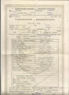 Chechoslovakia, Komarno. Komárom, High School Report, 1935. - Diploma & School Reports