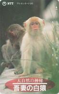 Télécarte JAPON / NTT 411-235 - TBE - ANIMAL - Singe Macaque & Bébé - Monkey JAPAN Phonecard - Sin Clasificación