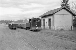 Sucrerie De Nangis. Locomotive 031 T N°3708 Et Train De Betteraves à La Croix-en-Brie. Cliché Jacques Bazin. 02-11-1957 - Trains