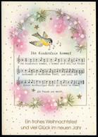 F0793 - TOP Glückwunschkarte Weihnachten - Liedkarte Vogel Golddruck - Horn Karte - Non Classés