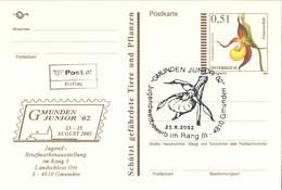 723  Sabot De Vénus: Entier (c.p.) D'Autriche, 2002. Timbre Imprimée Orchidée.  Lady's-slipper Stationery Postc. Orchid - Orquideas