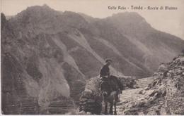 TENDA VALLE ROIA - Unclassified
