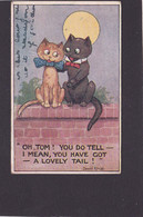 Cat Card   -  Oh Tom, You Have A Lovely Tail !!.    Donald McGill.  1913. - Chats