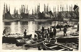Concarneau - Le Débarquement Des Thons - Concarneau