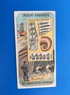 Les Ages De La Terre-Fossiles Houillères Carbonifai ChocolatAiguebelle-☛Chromos-ImageChromoChocolaterie Donzère Drôme - Aiguebelle
