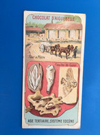 Les Ages De La Terre-Fossiles Eocène Four à Plâtre ChocolatAiguebelle-☛Chromos-ImageChromoChocolaterie Donzère Drôme - Aiguebelle