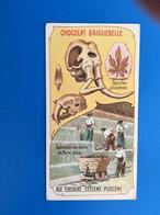 Les Ages De La Terre-Fossiles Pliocène Bancs Marne  ChocolatAiguebelle-☛Chromos-ImageChromoChocolaterie Donzère Drôme - Aiguebelle