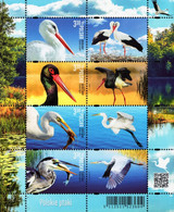 Poland - 2020 - Polish Birds - Mint Stamp Sheetlet - Unused Stamps