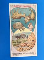 Les Ages De La Terre-Fossiles Quaternaires Pierre M ChocolatAiguebelle-☛Chromos-ImageChromoChocolaterie Donzère Drôme - Aiguebelle