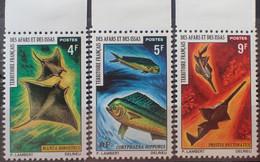 R2452/1209 - 1971 - TERRITOIRE FR. DES AFARS ET DES ISSAS - SERIE COMPLETE - N°372 à 374 NEUFS** BdF - LUXE - Ongebruikt