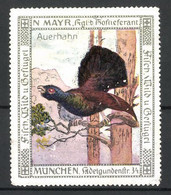 Reklamemarke Kgl. Hoflieferant N. Mayr, Adelgundenstrasse 34, München, Auerhahn Auf Einem Ast Sitzend - Erinnofilia