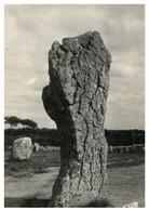 """(OO 29) (Old) France - Carnac - Alignement De Ménec """"Le Géant"""" - Dolmen & Menhirs"""