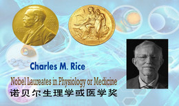 T92-013 ]  Charles M. Rice Nobel Prize For Physiology Or Medicine,  Pre-stamped Card Postal Stationery - Nobel Prize Laureates