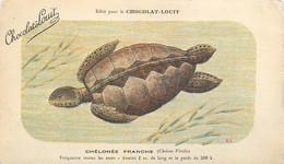 TORTUE - CHELONEE FRANCHE - CPA - édition PUB; CHOCOLAT LOUIT - Voir Deux Scans - Turtles