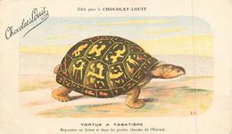TORTUE - TORTUE à TABATIERE - CPA - édition PUB; CHOCOLAT LOUIT - Voir Deux Scans - Turtles