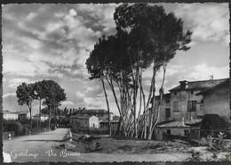 LOMBARDIA - GOTTOLENGO - VIA BRESCIA - ED. MICHELETTI - VIAGGIATA 1951 - Other Cities