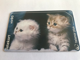 9:286  - Norway 257 Katter Cats - Norway