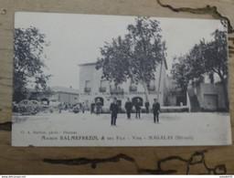 MAGALAS : Maison BALMEFREZOL Et Ses Fils, Vins ................929 - Other Municipalities