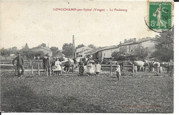88 - Vosges - Longchamp - Non Classificati