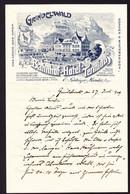 1909 Briefbogen: Bahnhof Hotel Terminus In Grindelwald. - Publicidad