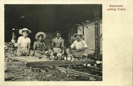 Micronesia, KOSRAE KUSAIE, Native Kosraeans Cutting Copra (1910s) Postcard - Micronesia