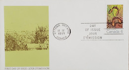 A) 1971, CANADA, SPRING, LETTER FROM OTTAWA, FDC, XF - Cartas