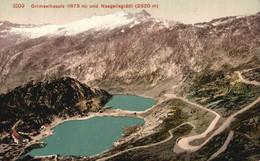 SUISSE   Grimselhospiz Und Naegelisgratli   Colorisée - VS Valais