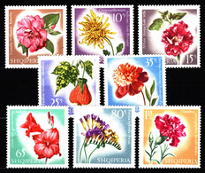 Albania 1967 Mi 1143-1150 Flowers MNH - Albanie