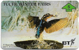 UK - BT - L&G - BTG-734 - TCCFE Winter Fairs '96 - Kingfisher - 605F - 5Units, 1.000ex, Mint - BT General Issues