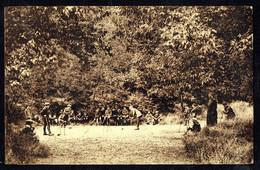 NAMUR - Institut Saint-Louis (Parc St-Fiacre) - Le Jeu De Croquet - Circulé - Circulated - Gelaufen -1931. - Namur