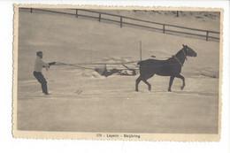 28027 - Leysin Skijöring - VD Vaud