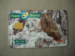 7056 Télécarte Collection OISEAU HIBOU ROYAL  Espagne  ( Recto Verso)  Carte Téléphonique - Gufi E Civette