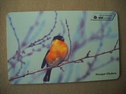 7057 Télécarte Collection OISEAU Principauté ANDORRE Pinsa Borroner  ( Recto Verso)  Carte Téléphonique - Uccelli Canterini Ed Arboricoli