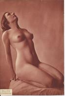 Arlaud L'offrande  Photo Braun Nue Erotique - Other
