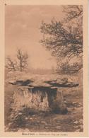 Dolmen Du Cap Del Pouech - Mas D' Azil (Mégalithe) - Dolmen & Menhirs
