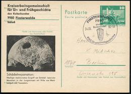 7980 FINSTERWALDE 1/ Meldet/ Bodenfunde!.. 1982 (24.5.) SSt = Faustkeil Auf Amtl. P 10 Pf. Neptunbrunnen, Grün + Amtl. Z - Prehistoria