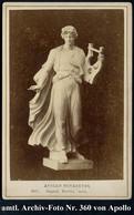 Berlin 1890 ? (ca.) Orig. Foto Nr.360: APOLLOMUSAGETES (Apollo-Skulptur Mit Lyra) Aus Der Antikensammlg Berlin (Format C - Mitología