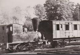 Carte Photo : Locomotive Et Wagon - Trenes