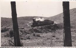 CPM : Locomotive Vapeur Et Wagons Dans Les Dunes (Biscarrosse - Landes 40) - Trenes