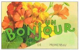 89  UN BONJOUR  DE  MONETEAU CPM  TBE  VR1078 - Moneteau