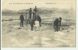 SAINT PIERRE ET MIQUELON - La Recolte De La Glace Beau Plan Animé Bon état - Saint-Pierre-et-Miquelon
