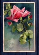 Carte Illustrée. Rose. Coin Haut Gauche Abimé - Flowers