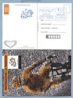 2015 TOUR DE FRANCE OBLITERATION MECANIQUE - Cycling