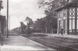 Carte Photo - Caudos (33) - Intérieur De La Gare - Otros Municipios