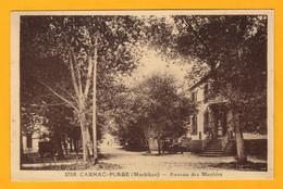 Carnac Plage  Avenue Des Menhirs  Portail De L'église      Edt  Rivière   N° 2768 - Carnac