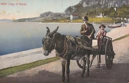 Cartolina - Postcard /   Viaggiata - Sent /  Carro Trainato Da Un Asino - Lago Di Garda. - Europa