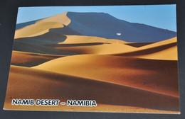 Namib Desert - Namibia - Namibia