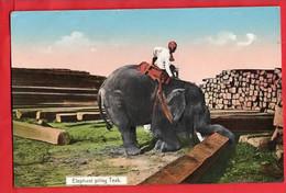 MYANMAR  BURMA    ELEPHANT  PILING TEAK     ETHNIC INTEREST RP - Myanmar (Burma)