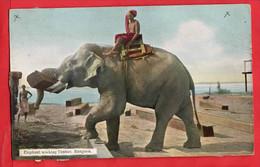 MYANMAR  BURMA  RANGOON   ELEPHANT  WORKING TIMBER      ETHNIC INTEREST RP - Myanmar (Burma)