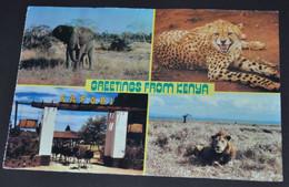Greetings From Kenya - Kenya